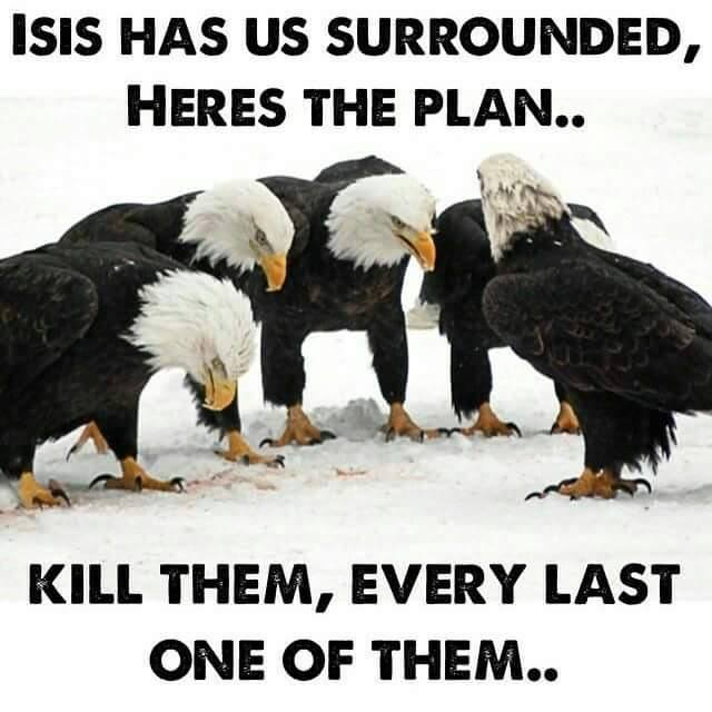 Eagles against ISIS