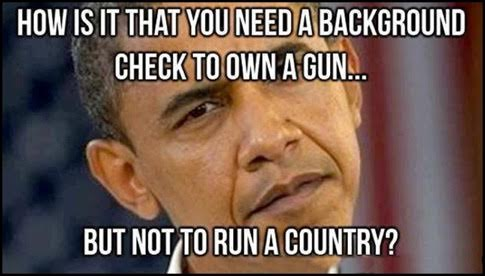 Background check to buy a gun but not run a country