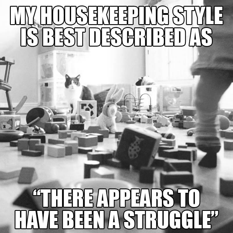 Housekeeping style