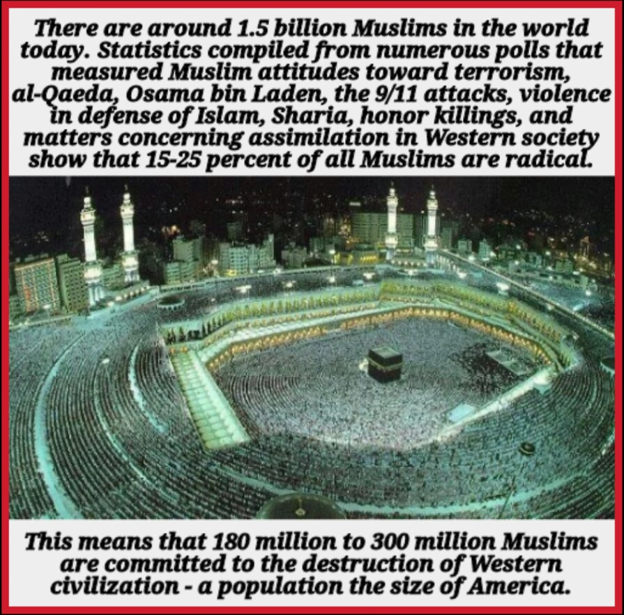 Large numbers of Muslims are not our friends