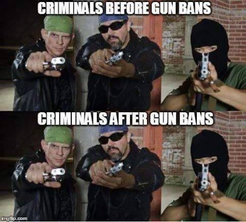 criminals before and after gun bans