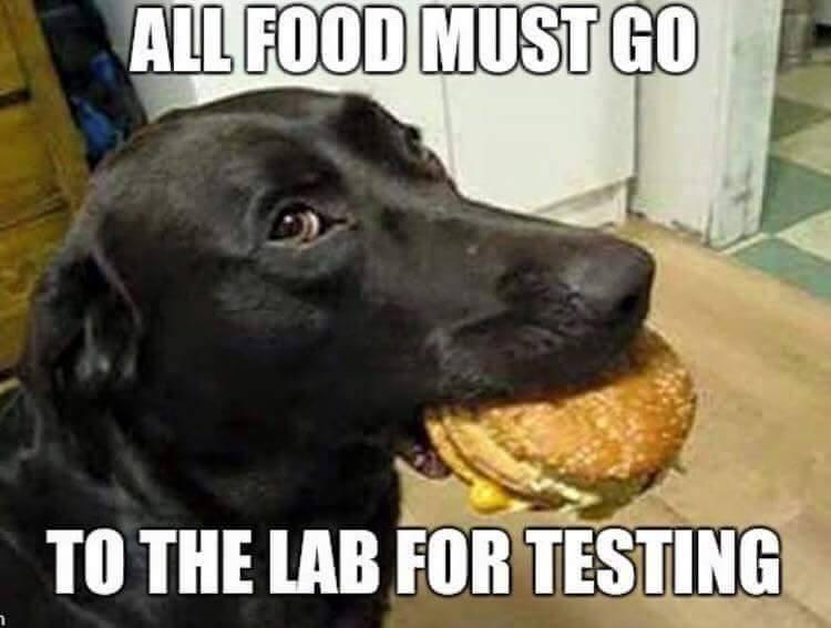 Food testinglab