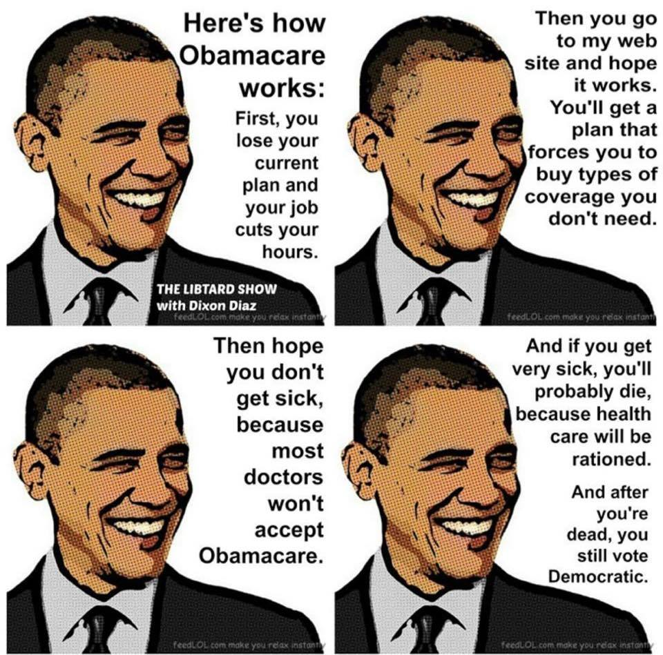 How Obamacare works