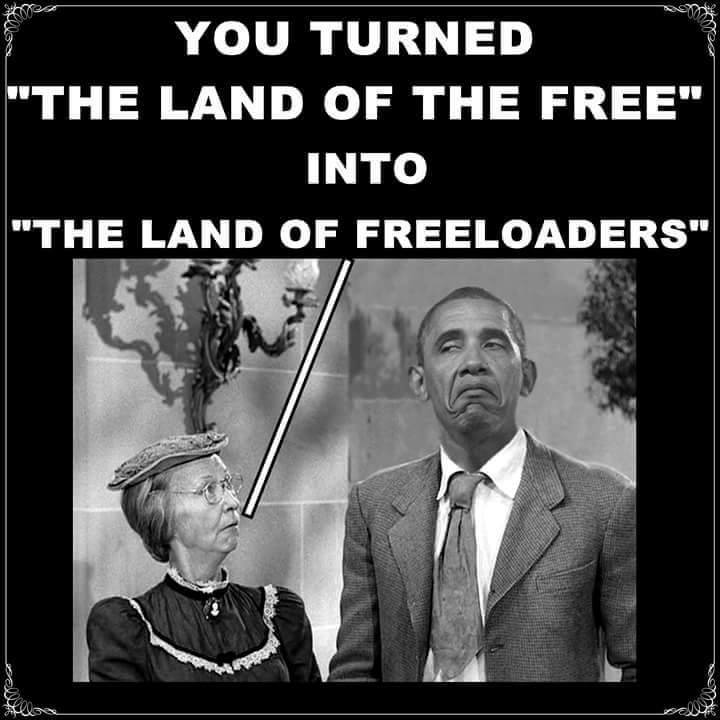 Land of the freeloaders