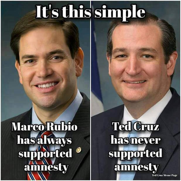 rubio Cruz Amnesty