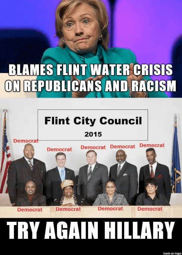 Flint City council all Democrat