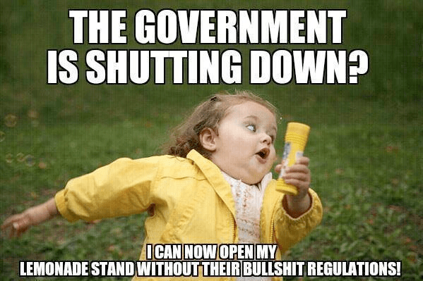 Government shutting down good for lemonade stands