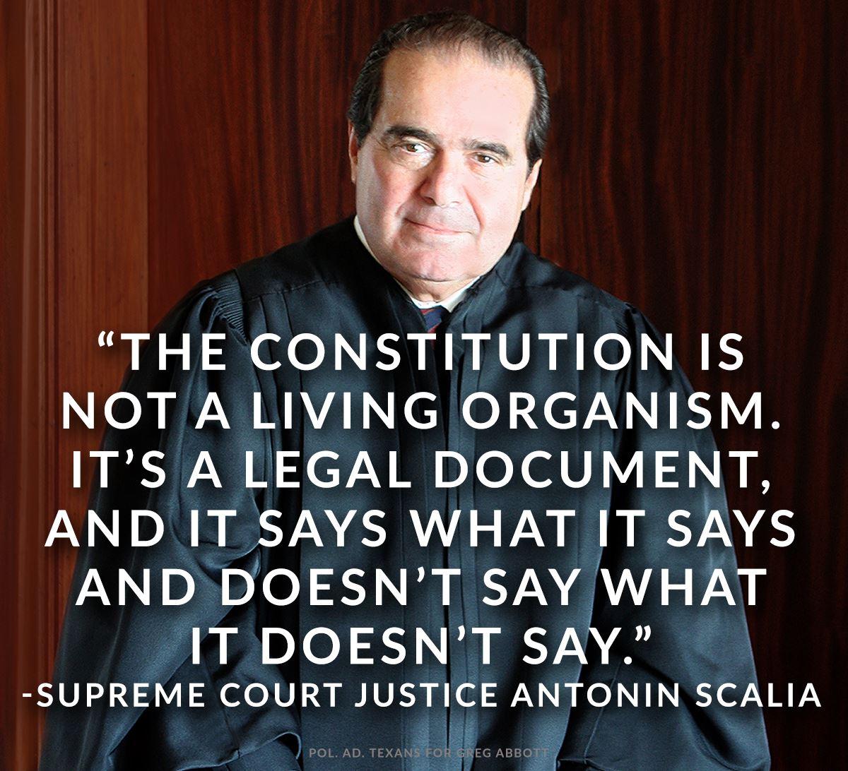 Wisdom Constitution Scalia