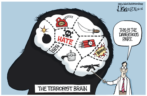 Islam the terrorist brain