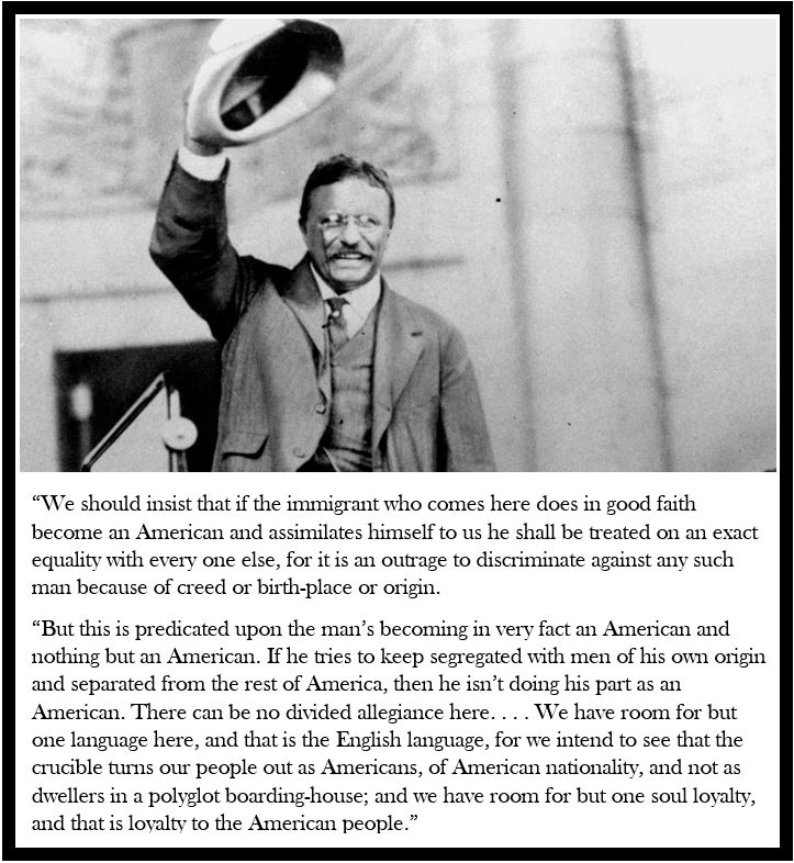 Immigration Teddy Roosevelt