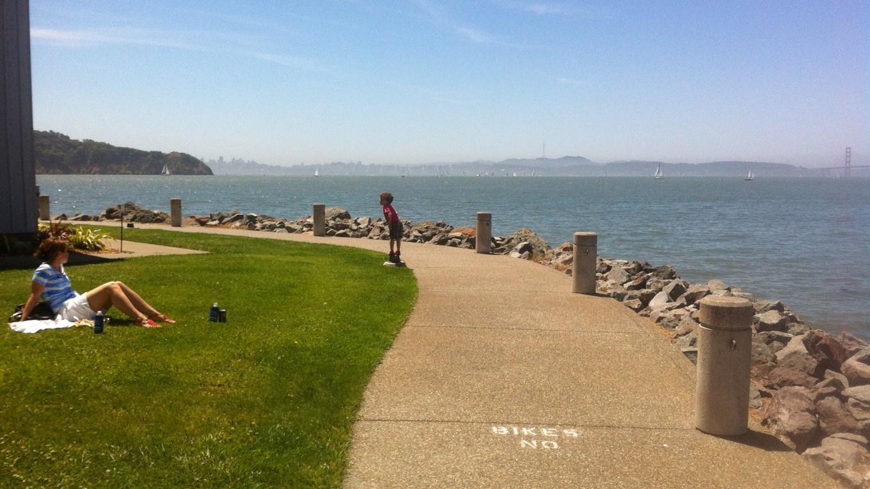 Climate Change post Marin County Tiburon shoreline