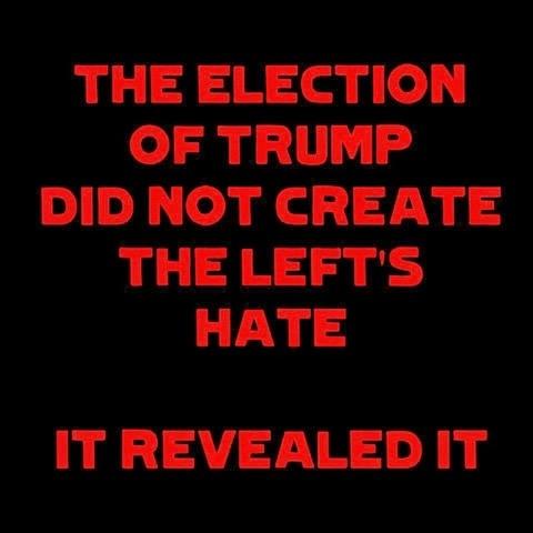 Illustrated edition Leftists hate