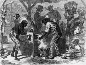1619 Project Slaves Cotton Gin