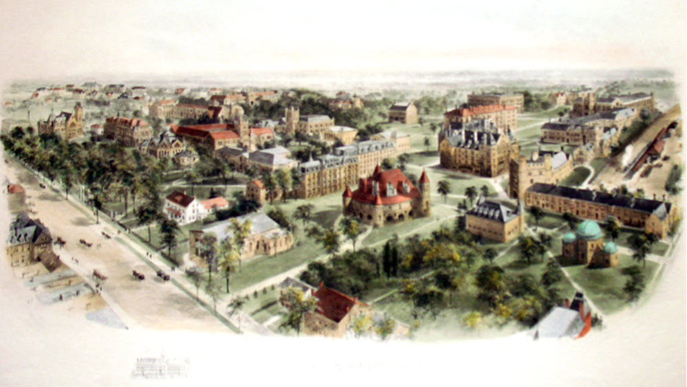 Ivy Leagues