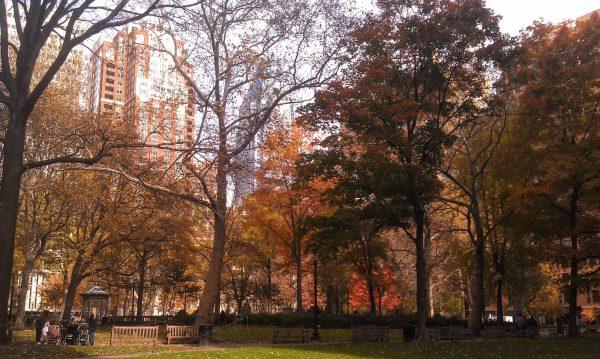 Fall foliage in Philadelphia's Rittenhouse Square.