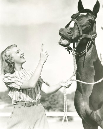 Black and white vintage photo of woman talking to horse about diversified stock funds