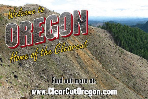 via clearcutoregon.com