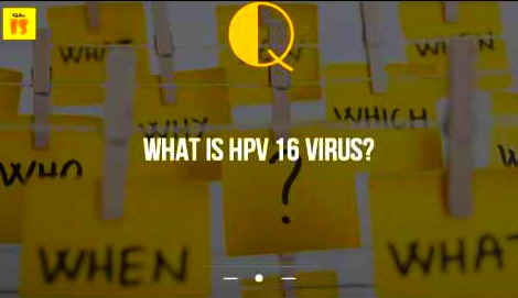 hpv16 explained