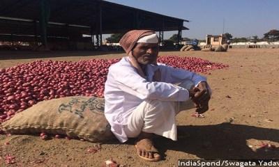Demonetisation Woes: Onion Rates Halve, Farmers Have No Cash, Can't Go Cashless
