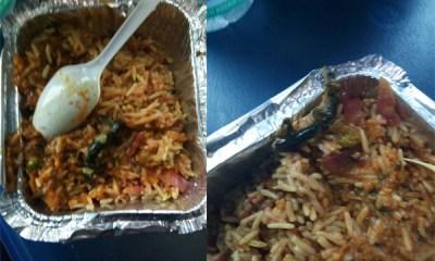 Passenger Finds Lizard In Veg Biryani Nearly A Week After CAG Slams Railway Food
