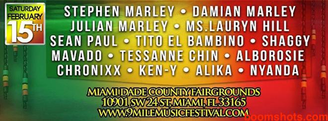 NineMileFestival2014