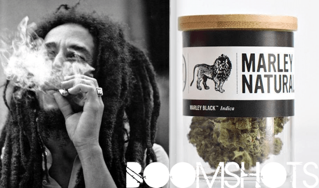 Marley Natural Mystic Blowing Through The Air