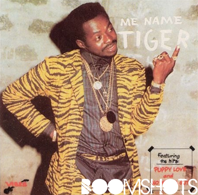 Eye of A Tiger: New Song  Highlights The Style of Reggae Veteran Tiger