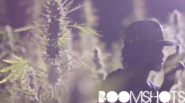 "WATCH THIS: Popcaan ""Weed Is My Best Friend"" Official Music Video"