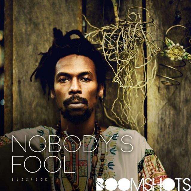 """BuzzRock's New Album: """"Nobody's Fool"""""""