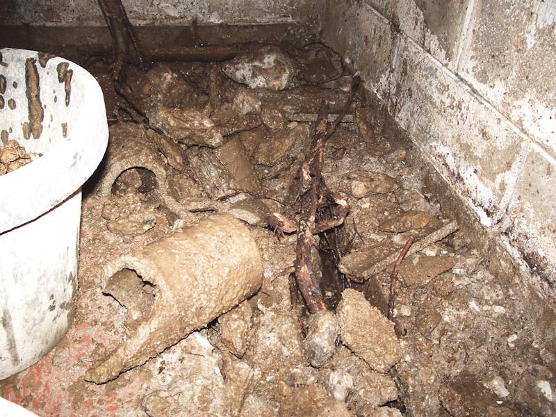 vancouver excavation company