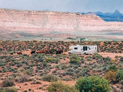 utah state trust land camping