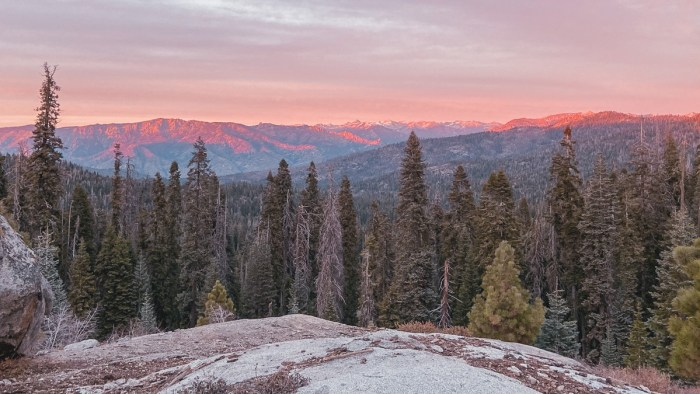 sequoia national forest, kings canyon overlook