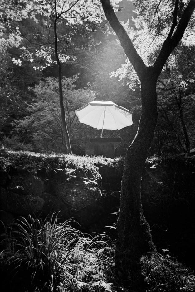 Bekaert16 Photographer Spotlight: Olivier Bekaert Design Photography