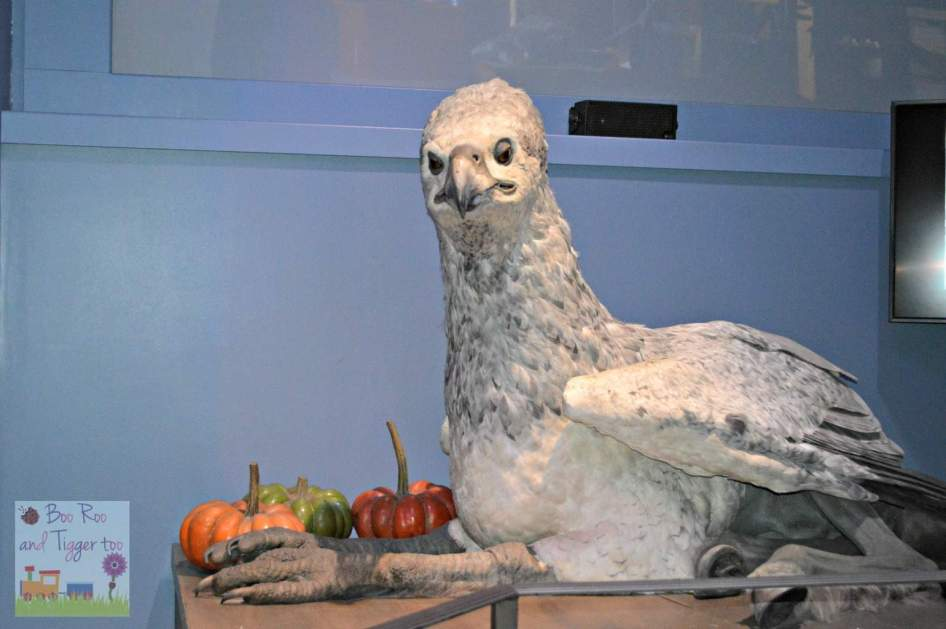 Harry Potter Feathers and Flight - BuckBeak