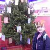 Christmas Tree Trail - Hollywood Bowl