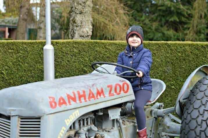 Banham Zoo - Roo Tractor