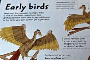 Gold Stars Factivity Dinosaurs - Early Birds