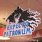 Harry Potter Book Night 2016 - Expecto Patronum