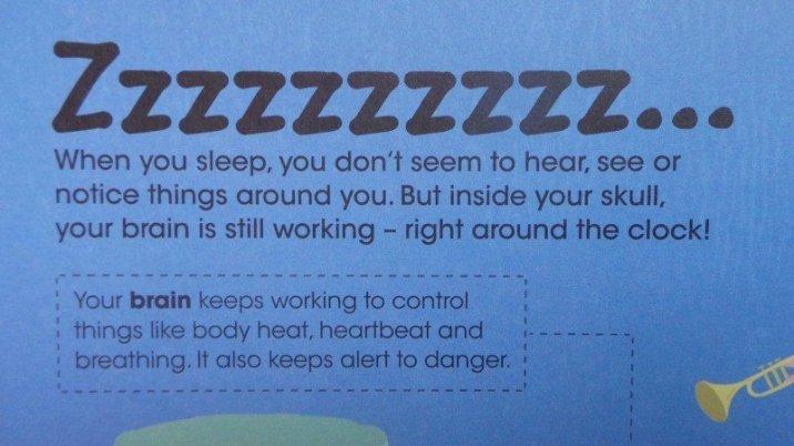 The Amazing Human Body - Sleep