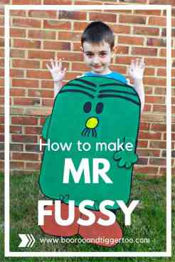 How to make Mr Fussy