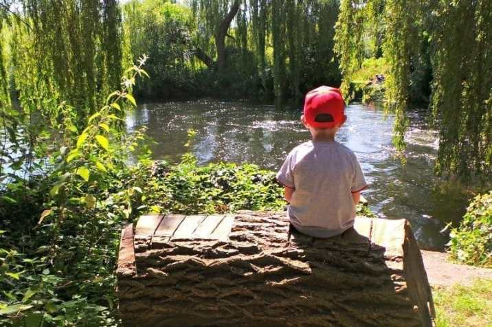 Taverham Mill - Tigger Sitting on a Log