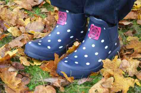 joules-navy-spot-wellibob-short-welly