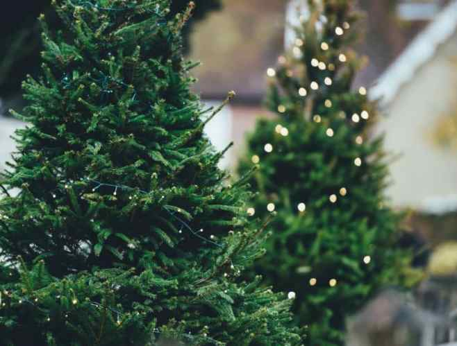 Five things to include on your Christmas Tree