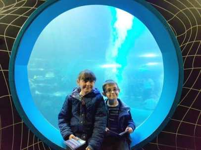 National SEA LIFE Centre Birmingham - Roo and Tigger Shark Tank
