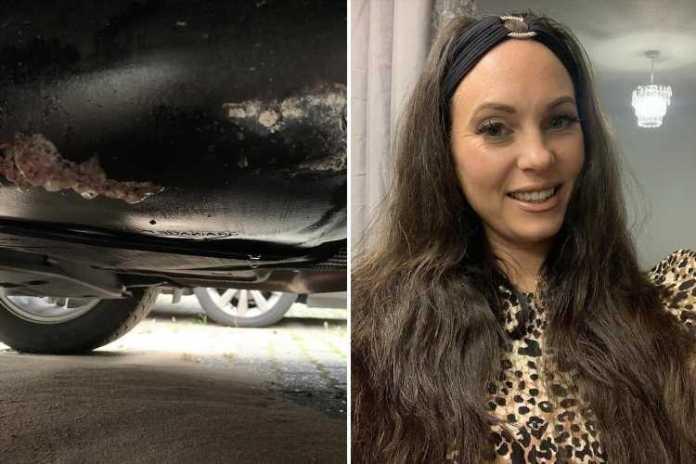 En engelsk kvinde har fået stjålet alt benzinen, som hun dagen forinden havde fyldt på sin Ford Fiesta.