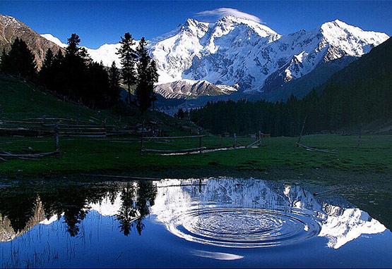 Pakistan Fairy Meadows Circles of Life