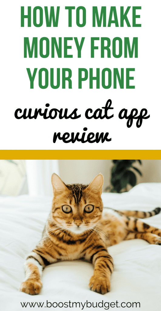 Want to make money from home? Curious Cat is a survey app that lets you make money from home or on the go! It has a low payment threshold, meaning you can get extra money today! I tested it out for a while. See how much extra money I made and if its worth your while.