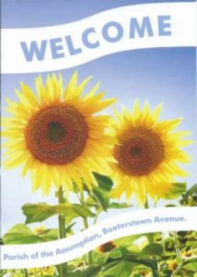 welcome-booterstown-01