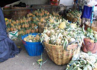 pineapple thailand