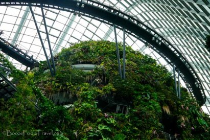 Artificial mountain in the Cloud Forest